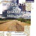 Death on Diamond Mountain